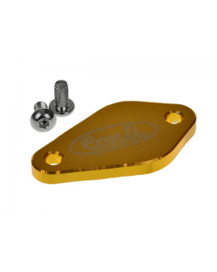Afdekplaat Oliepomp Conti - Derbi Senda / Minarelli AM6 - Goud (CON-0105BI0004)
